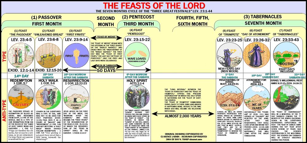 Leviticus • FaithEquip