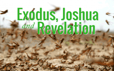 Exodus, Joshua and Revelation