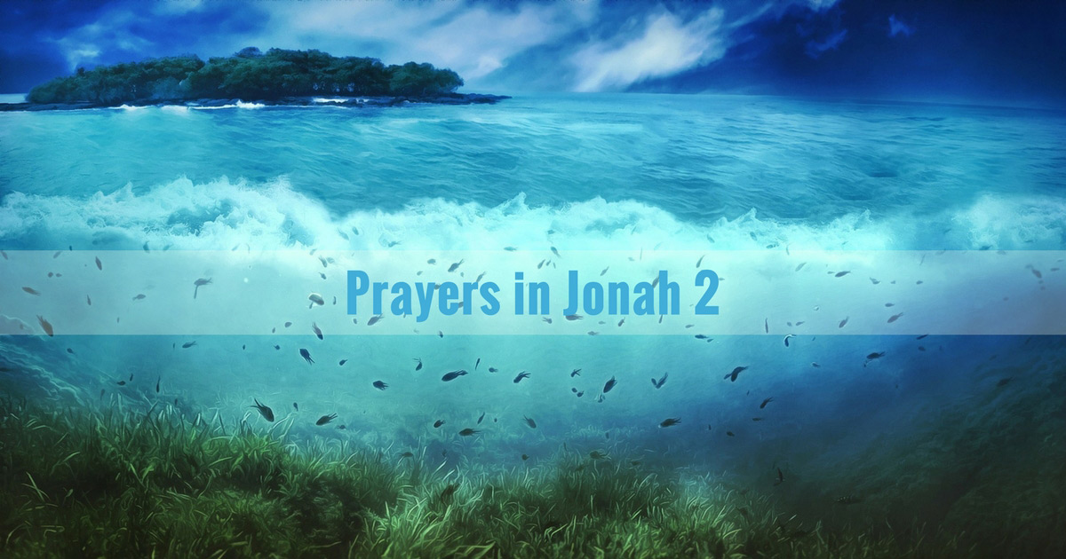 The book of Jonah is neither an allegory nor some fantasy. This is a true story about a true prophet (2 Kings 14:23-25) who fled in a ship to Tarshish and who was swallowed by a large fish and vomited out three days and three nights later (Jonah 1:3, 17; 2:10).