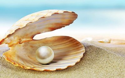 The Parable of the Pearl Merchant